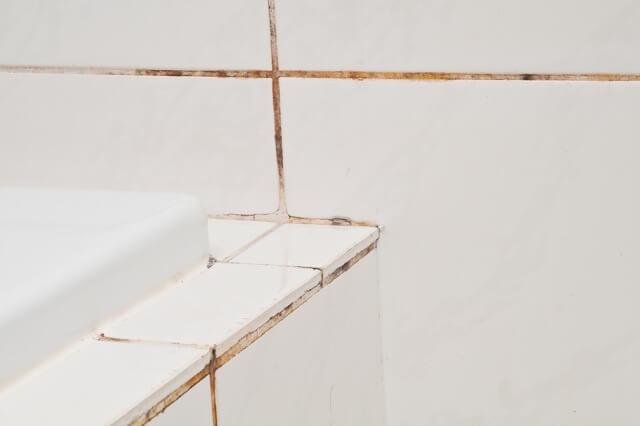 Schimmel Voegen Badkamer : Voorkom met dit product dat de voegen in je badkamertegels vies