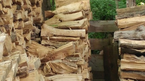 kat houtblokken