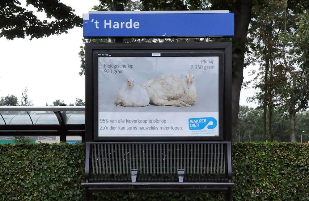 station-t-harde