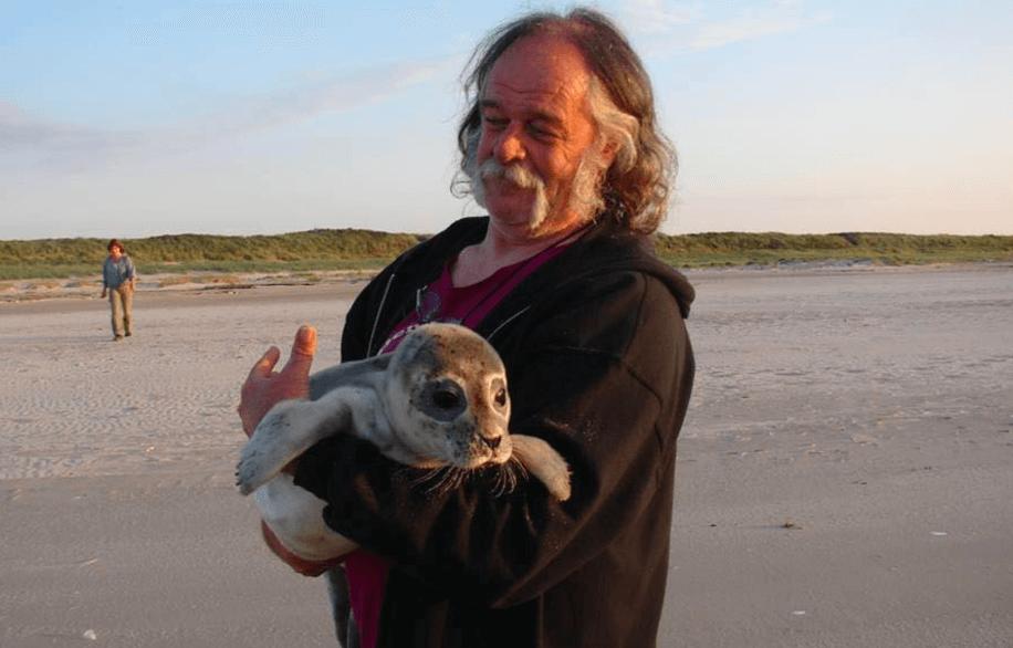 hessel zeehond