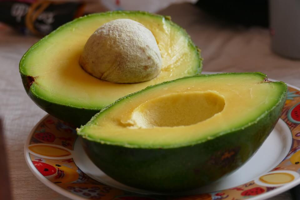 avocado avocadohand