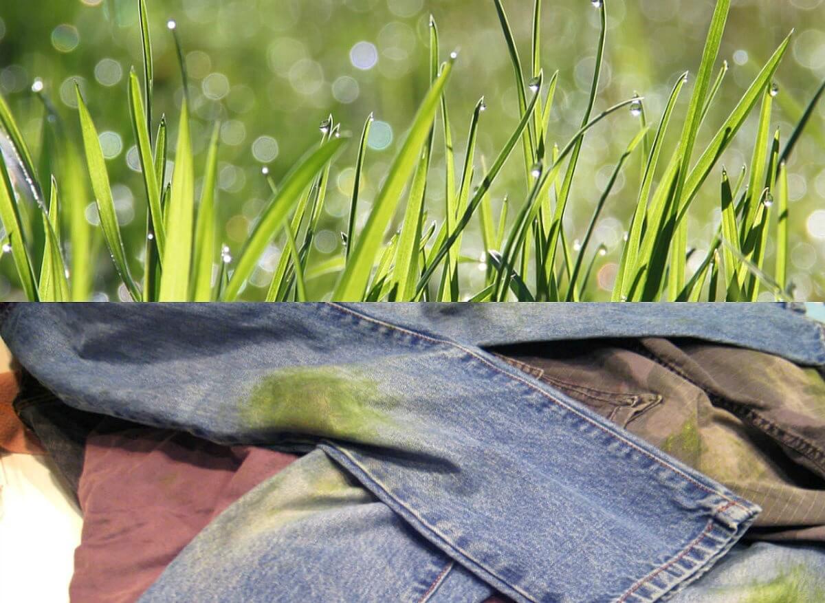 grasvlekken uit kleding