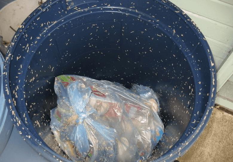 maden afvalbak